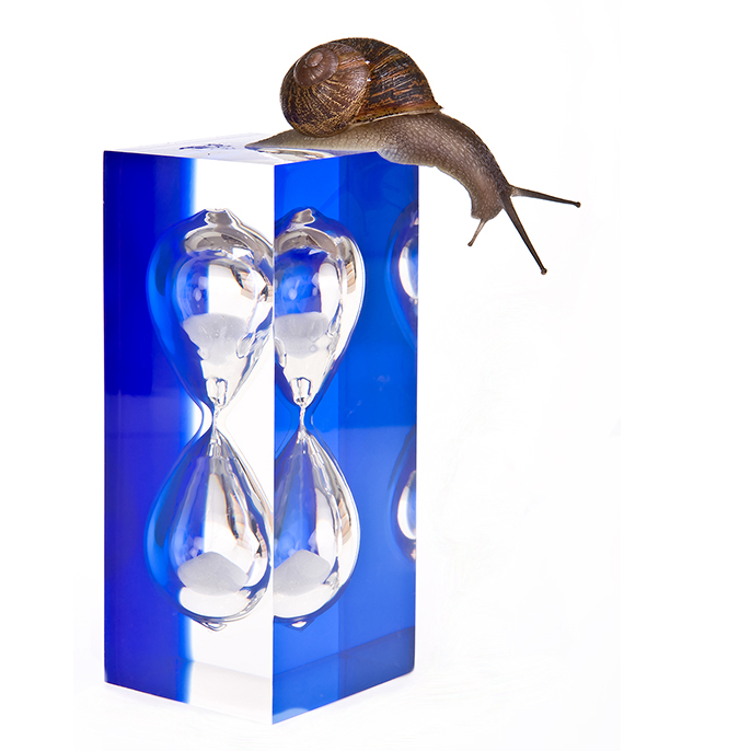 patience snail and hourglass
