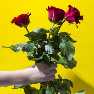 Hand with 3 red roses